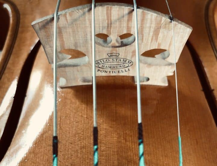 How to avoid a whistling E string on the violin