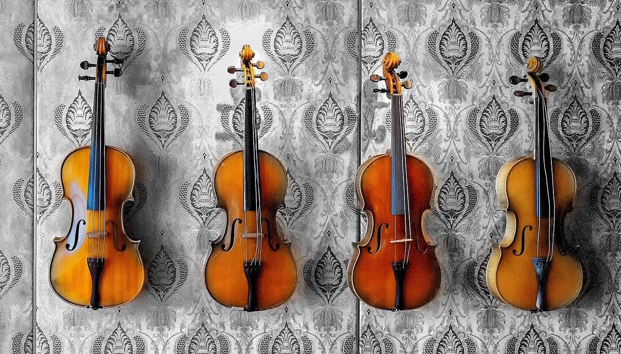 How to choose the right violin size