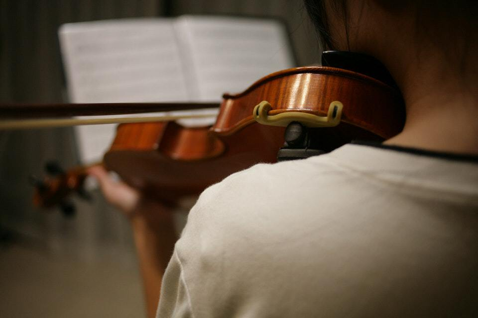 violin can't be self taught